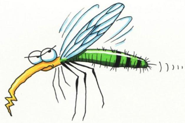 zanzare-bonus zanzariere-Alto Garda Immobiliare